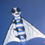 Fliegen003 - Arbeitskopie 2